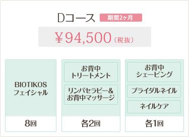 Dコース 94,500円