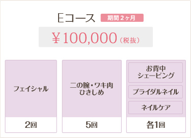 Eコース 100,000円