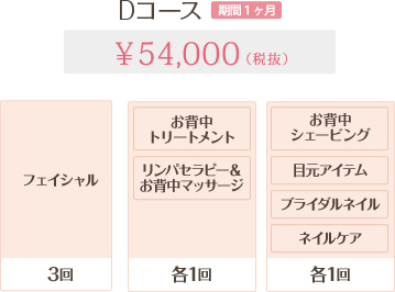 Dコース 1ヶ月 54,000円