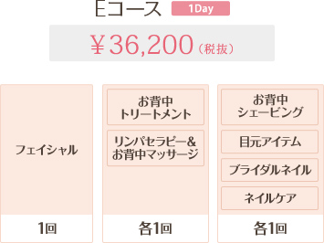 Eコース 1Day 36,200円