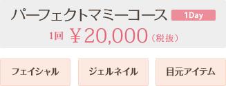 パーフェクトマミーコース 1回20,000円